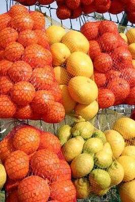 Brain Foods - fresh fruit